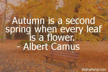 Albert Camus Quote: Autumn is a second spring when every leaf is a flower.